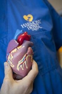 heart-model-plano-tx_399x600